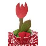 słodkie wiosenne tulipany