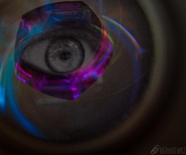 oko-web